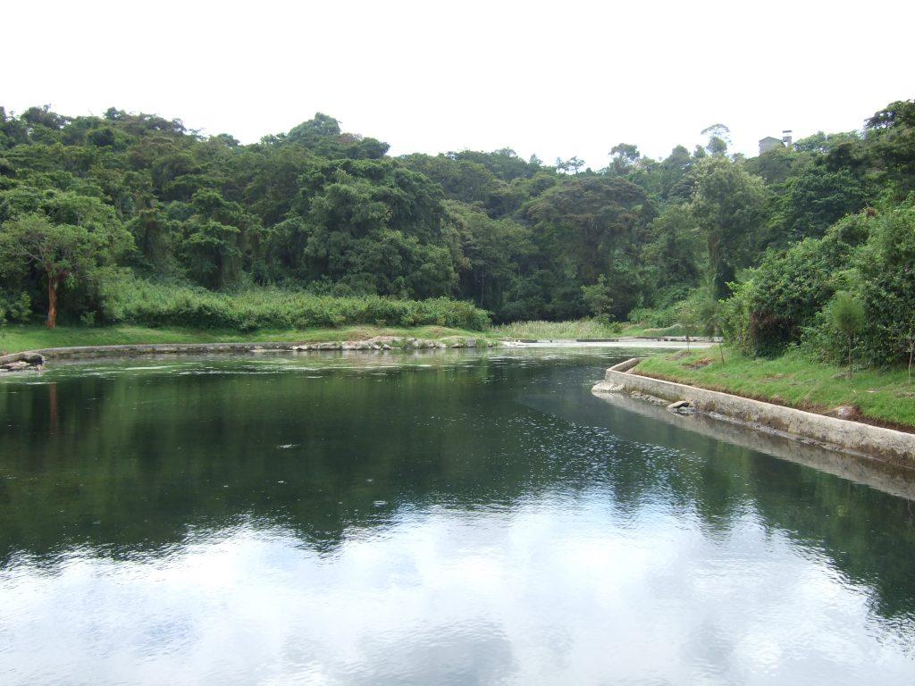 kikuyu dam spring