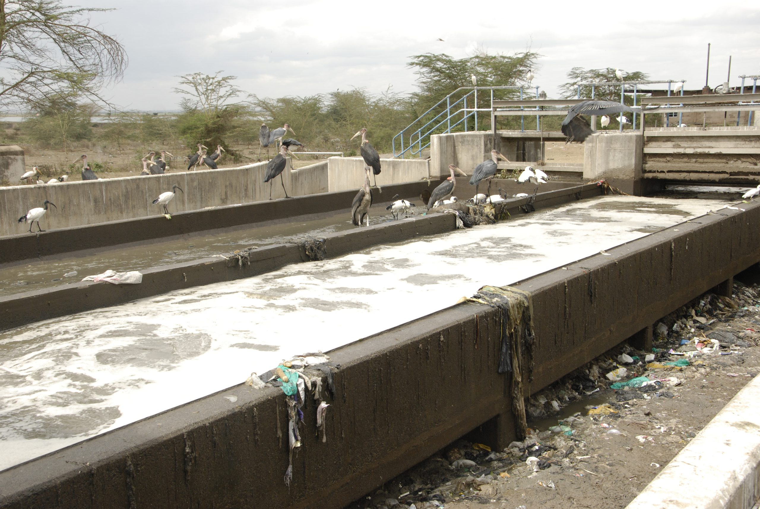 Nairobi Water Treatment Work